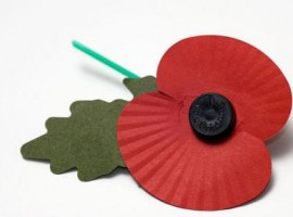 Poppy pin for Remembrance Day